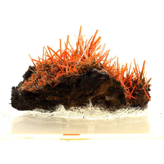 Crocoite. 2769.0 ct.