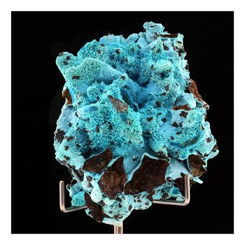 Chrysocolle. 316.5 ct.