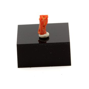 Corail rouge. 0.41 ct.