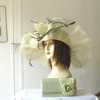 Wide-brimmed sinamay wedding hat
