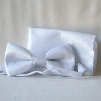 Bow tie - very light bright silver - for weddings, evenings, galas, formal parties