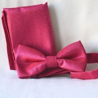 Bowtie for weddings, evenings, galas, formal parties