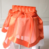 Wedding, evening orange matching accessories : stole and clutch