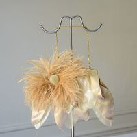 Golden evening clutch with rhinestone and feathers