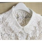Transparent Flower Lace False Collar Shirt
