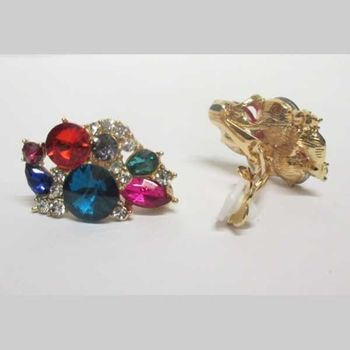 fancy earring in all colors with clip