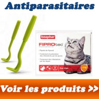 Antiparasitaires pour chat