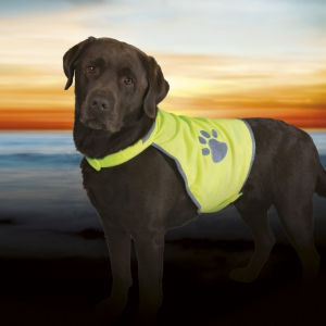 Gilet chien fluo Taille M