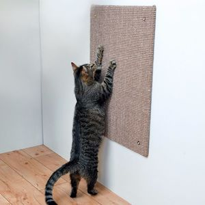 Griffoir mural pour chat XL