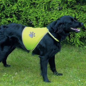 Gilet chien fluo Taille S