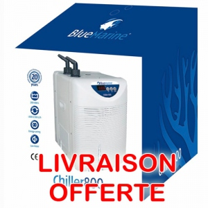 Groupe froid aquarium 800L