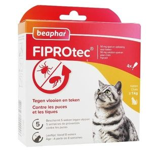 Pipettes Antipuces Chat