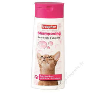 Shampoing chat et chaton Bulles