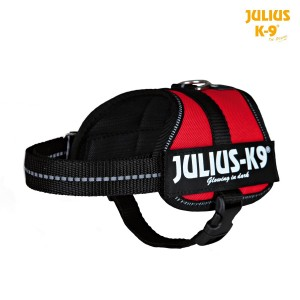 Harnais Power Julius 33-45 cm