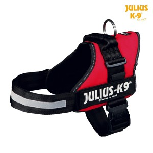 Harnais Power Julius 66-85 cm