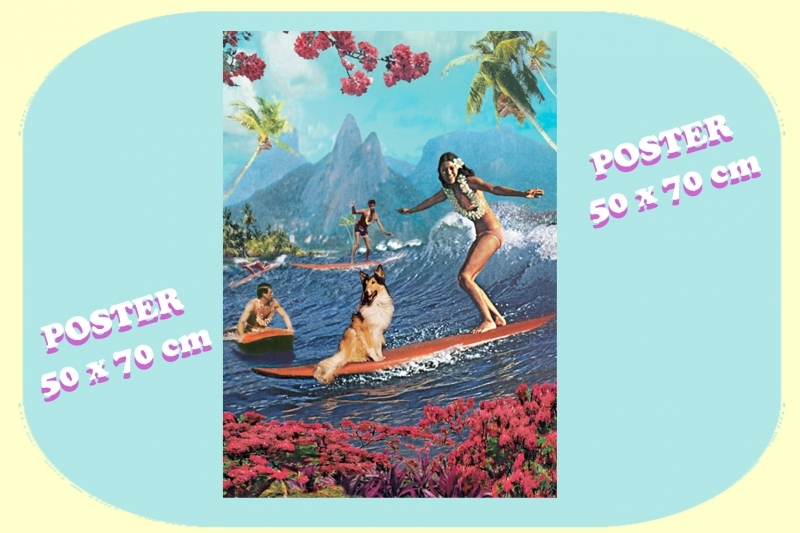 Poster BIKINI - Surfing with Lassie