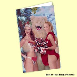 Carte postale dépliante BIKINI - Polar bear and the HOT girls !