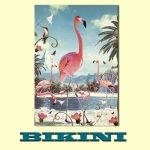 Carte postale BIKINI - Flamingo New
