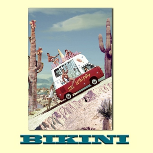 Carte postale BIKINI - Mr Whippy's van