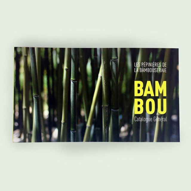 Catalogue : Bambous et Erables
