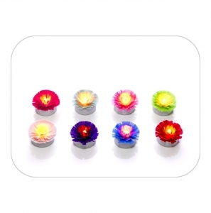 Pompon collection