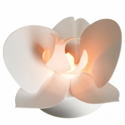 Set of 3 white orchids - LED lights