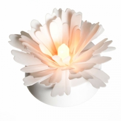 3 Marguerites lumineuses blanches - Ø8CM