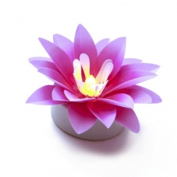 Set of 3 pink lotus - LED light
