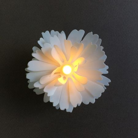 Plexiglass Bubble Ø 12 cm with a LED Daisy