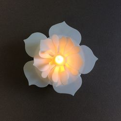 Plexiglass Bubble Ø 12 cm with a LED Camelia