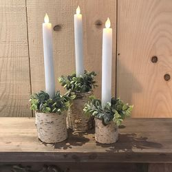 Set of 3 birch tree holders H 5,5cm , 7cm and 10cm