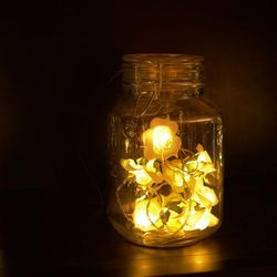 10 LED roses string with 8 h timer