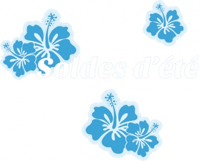 sticker soldes SO0033