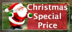 Special prices Christmas