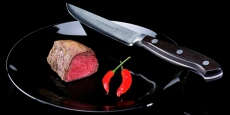 Steakmesser 12 cm Dick Premier Nature