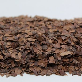Cocoa bean bark