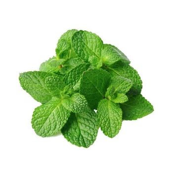 PEPPER MINT Candy Type - Flavour
