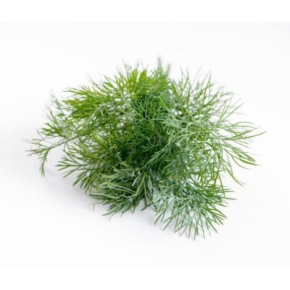 DILL - Flavour