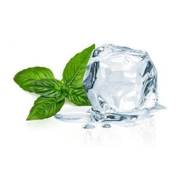 ICY MINT - Flavour