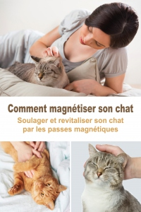 Comment Magnétiser son Chat