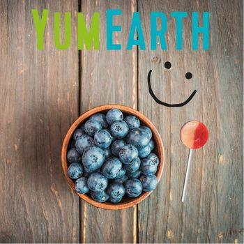 1 sucette MYRTILLE (BLUEBERRY) BIO vegan sans allergènes Yumearth
