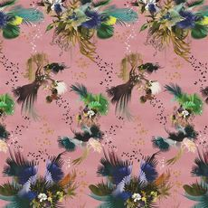 Christian Lacroix Wallpaper Oiseau Fleur Bourgeon