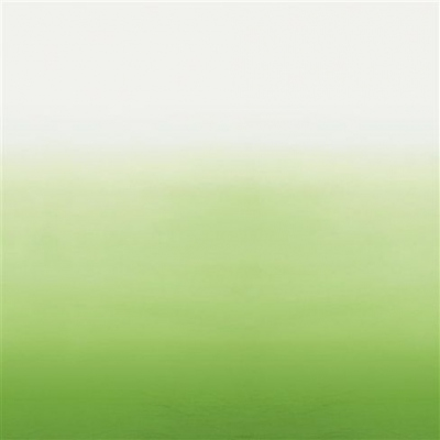 Designers Guild Saraille Grass wallpaper