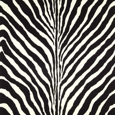 Ralph Lauren Bartlett Zebra wallpaper