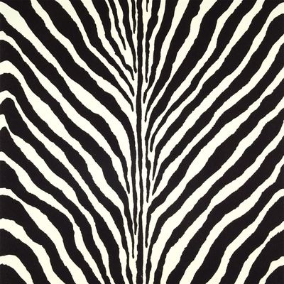 Ralph Lauren Bartlett Zebra Charcoal wallpaper