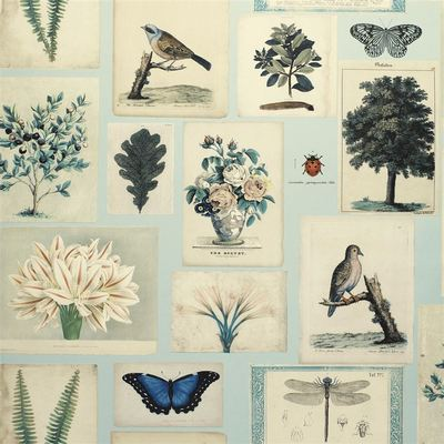 John Derian papier peint Flora and Fauna Cloud Blue