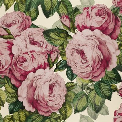 John Derian The Rose tuberose wallpaper