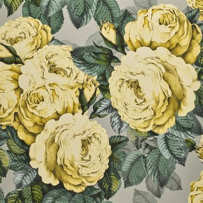 John Derian The Rose mimosa wallpaper
