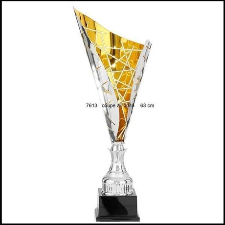 Trophée Coupe Luxury 280.00€