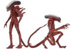 Aliens Genocide pack 2 figurines Big Chap & Dog Alien Neca